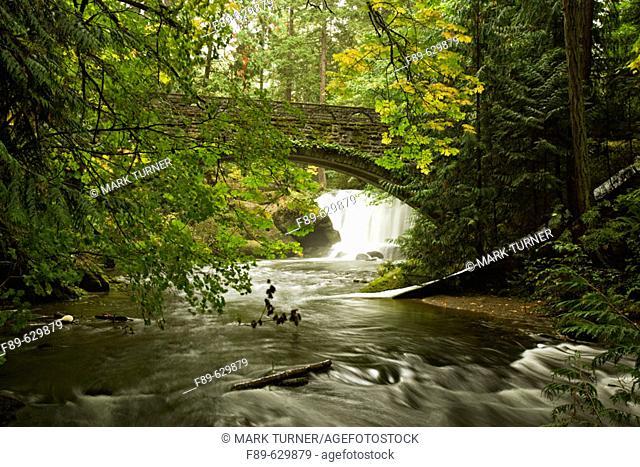 Whatcom Falls framed by stone bridge, autumn (Acer circinatum; A. macrophyllum). Bellingham, Whatcom Falls Park, WA