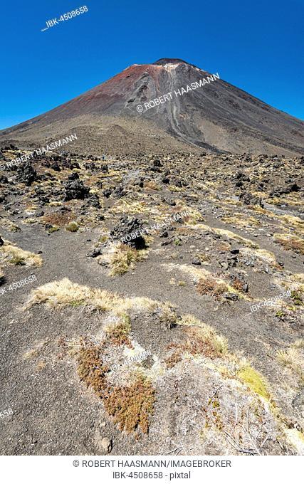 Mount Ngauruhoe, active volcano, volcanic landscape, Tongariro Alpine Crossing, Tongariro National Park, North Island, New Zealand