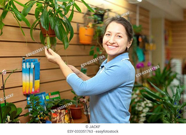 Happy mature woman looks Nepenthes plant at flower store