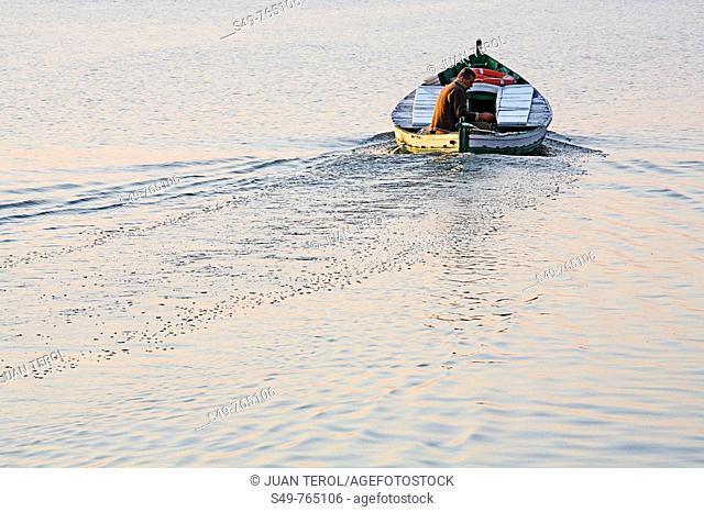 Front view of man driving a boat in La Albufera of Valencia