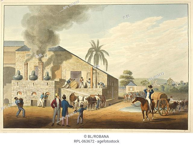 View of a curing-house and stills. Image taken from Ten Views in the Island of Antigua in which are represented the process of sugar making and the employment...