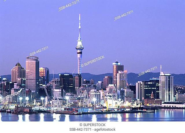 City Skyline, Auckland, North Island, New Zealand