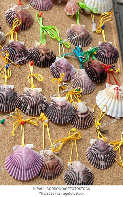 Galicia, Spain: Scallop shells for sale in a shop on the Rúa Maior along the Camino Francés. The shells are emblematic of the Way of St