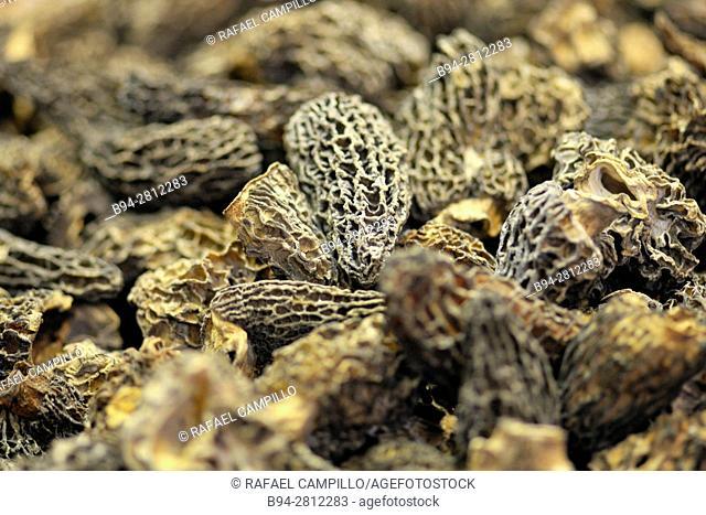 Dried Morels (Morchella vulgaris). Sant Josep aka Boqueria market, Barcelona. Catalonia, Spain