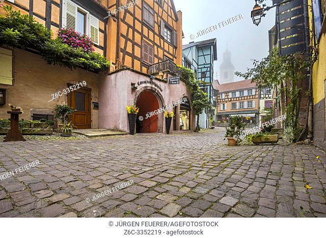 scenic lane of the tourist destination Riquewihr, village of the Alsace Wine Route, France, cobblestone lane with vine and flower decoration in the autumn