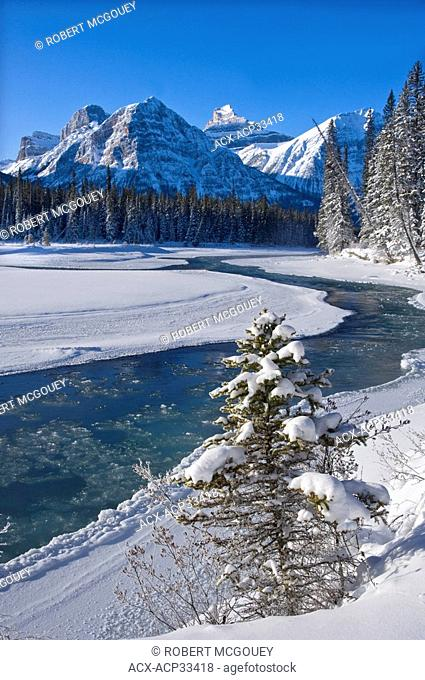 A vertical winter scenic along the freezing Athabasca river in Jasper National Park Alberta Canada