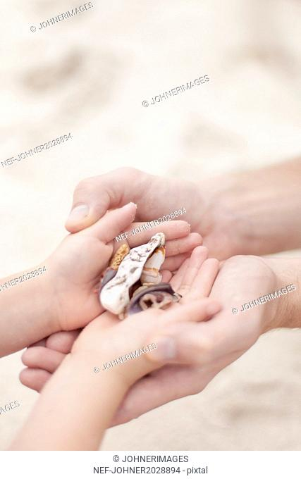 Child handling shells to mother