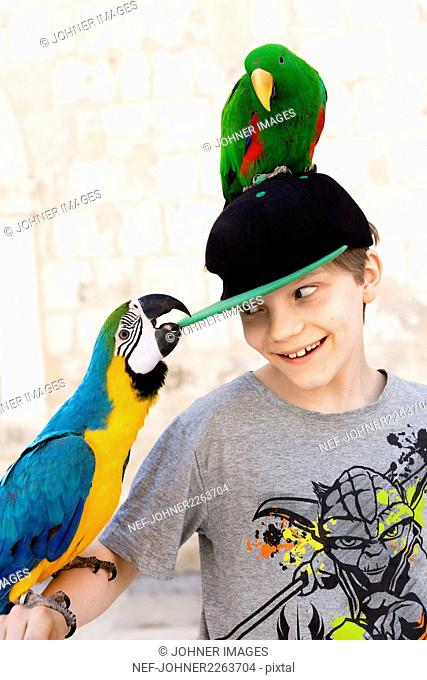Smiling boy with parrots