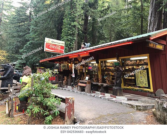Eureka, CA - November 19, 2018: Confusion Hill oddity park in the California Redwoods National and State Parks in Northeast California