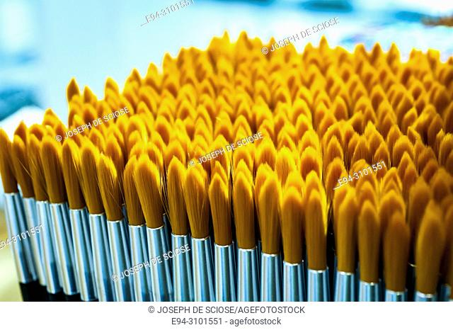 A close-up of a display of small yellow brushes