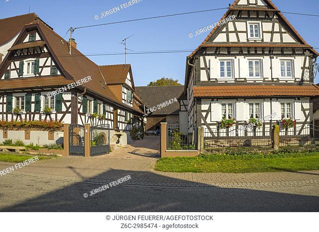 half-timbered houses with flower decoration in Seebach, small village in Northern Alsace, North Vosges, France, department Bas-Rhin