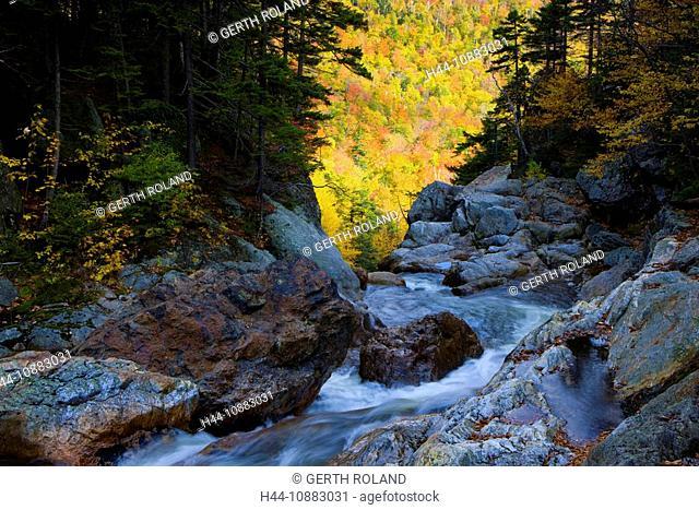 Glen Ellis Falls, USA, Amerika, Vereinigte Staaten, New Hampshire, White Mountain, Bach, Wasserfall, Felsen, Bäume, Verfärbung