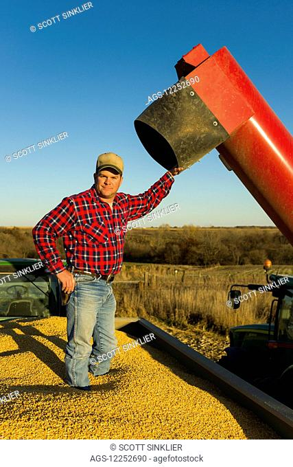 A farmer stands in a grain wagon full of harvested yellow corn in central Iowa; Iowa, United States of America