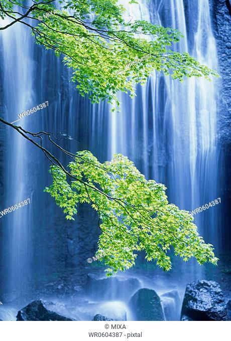 Tatsuzawafudo-no-taki Waterfall, Inawashiro, Yama, Fukushima, Japan
