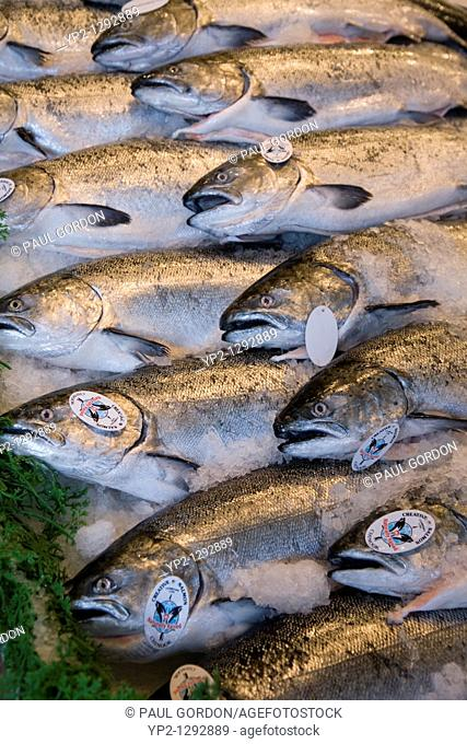 Rows of Salmon at Pike Place Market, Seattle, Washington