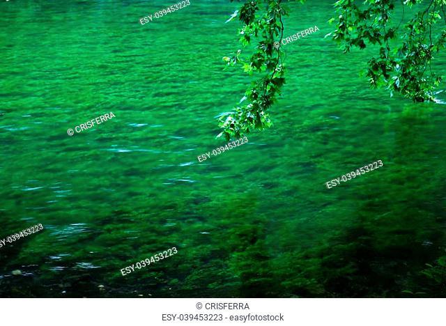 Sorgue river clean green water, Fontaine de Vaucluse, Provence, France