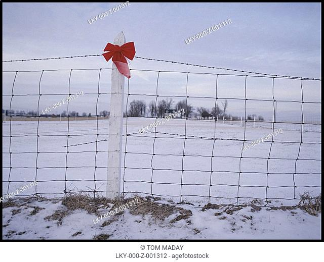 Red ribbon tied to fence in field