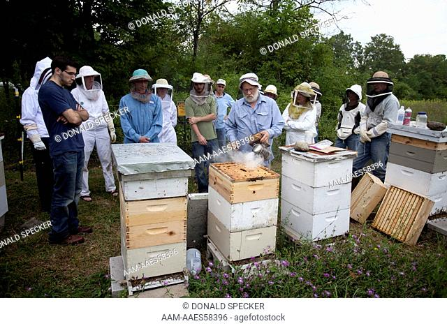 Bee club members learning about colony management Finger Lakes region, NY