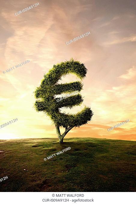 Topiary tree financial symbol Euro sign