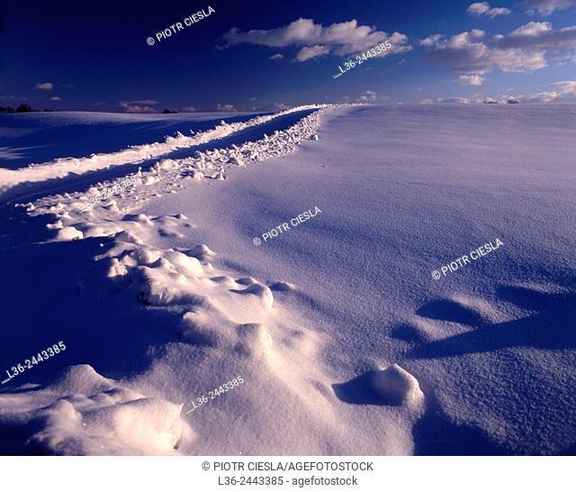 Winter, Suwalski region, North-eastern Poland