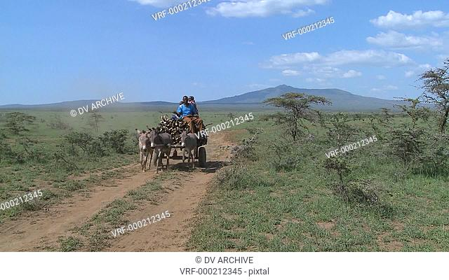 A horescart with a rider makes its way down a dirt road in East Africa