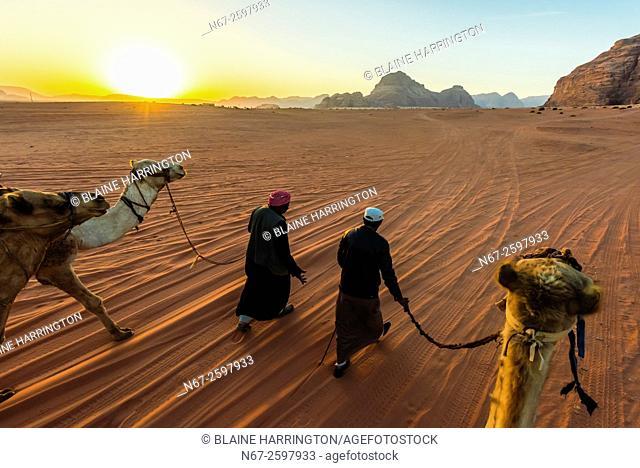 Bedouin men and camels, Arabian Desert, Wadi Rum, Jordan