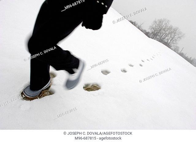 Walking in snow, motion