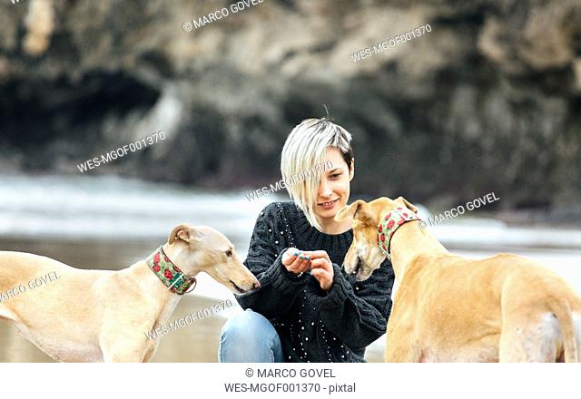 Spain, Llanes, young woman feeding her greyhounds on the beach