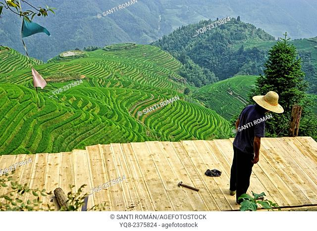 Man works in the amazing rice terraces of LongJi in Guangxi, China