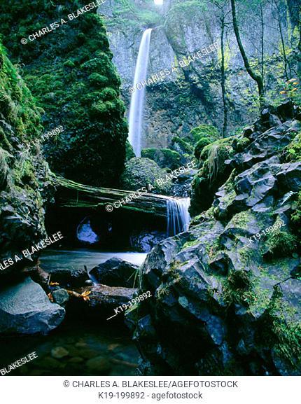 Elowah Falls. Columbia River Gorge NSA. Oregon. USA