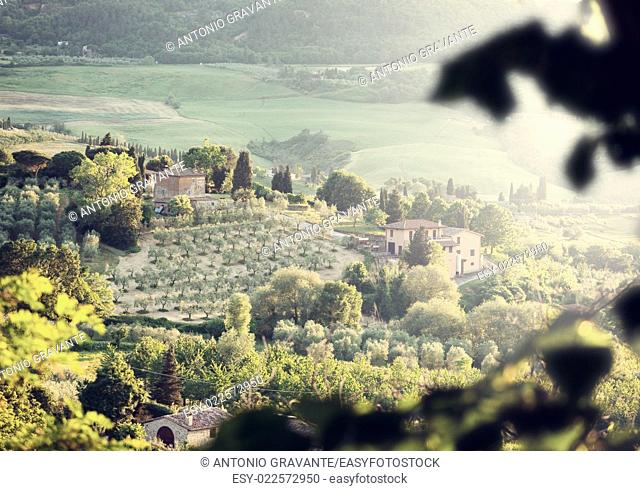 Typical landscape of Tuscany hills with lens flare