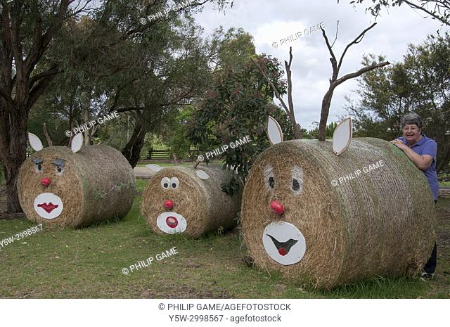 Farmer posing with the Christmas decor on her hay bales in rural South Gippsland, Victoria, Australia