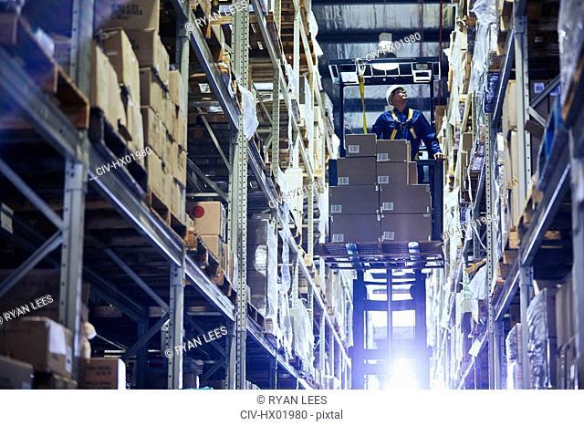Worker operating forklift stacking cardboard boxes on distribution warehouse shelves