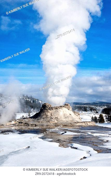 Castle Geyser erupting on a winter day at Yellowstone National Park, Wyoming, USA