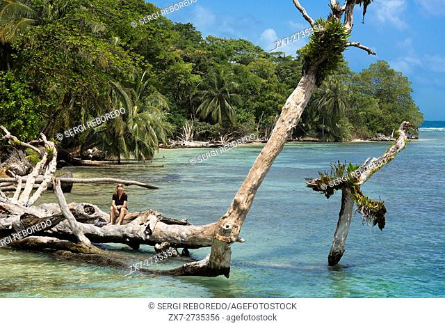 Island beach taken from the water surface with lush tropical vegetation, Bocas del Toro, Caribbean sea, Zapatillas Keys, Panama