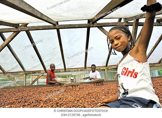 Young teenager with her father working on a drier for cocoa beans, village of Praia das Conchas, in the northern part of Sao Tome Island