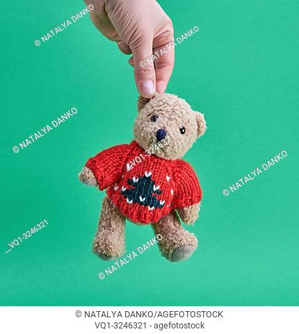 female hand is holding a little teddy bear by the ear on a green background
