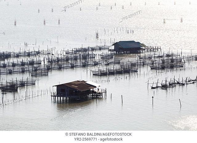 Fish farming in Songkhla lake in southern Thailand