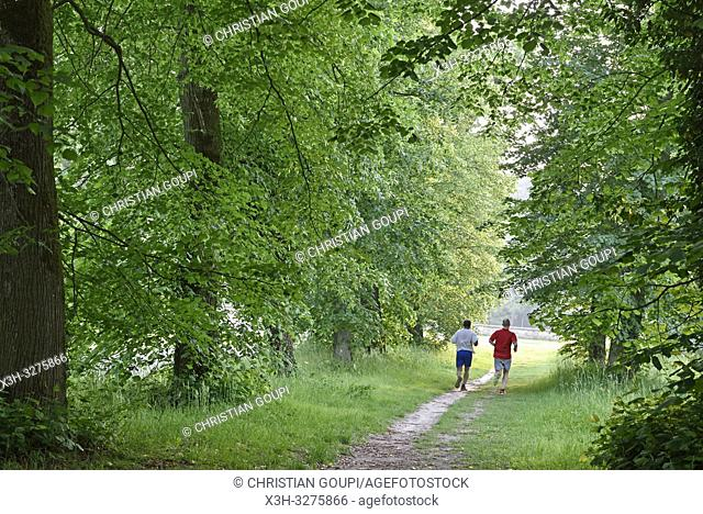joggers on a path in the Park of the Chateau of Rambouillet, Forest of Rambouillet, Haute Vallee de Chevreuse Regional Natural Park, Yvelines department