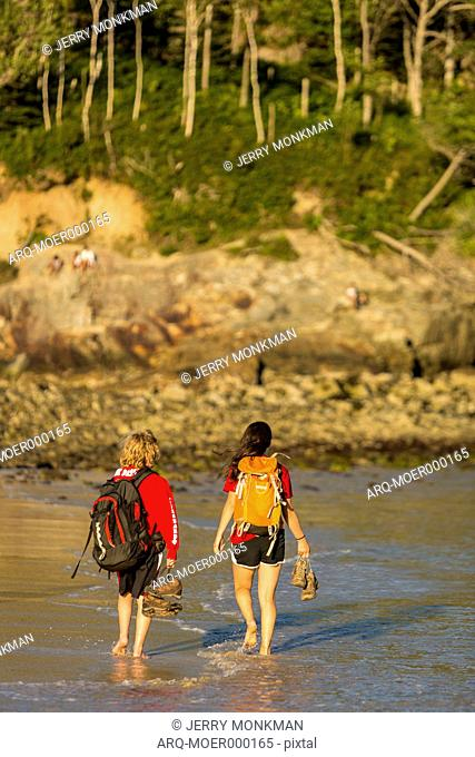 Boy And Girl Walking On Sand Beach In Acadia National Park