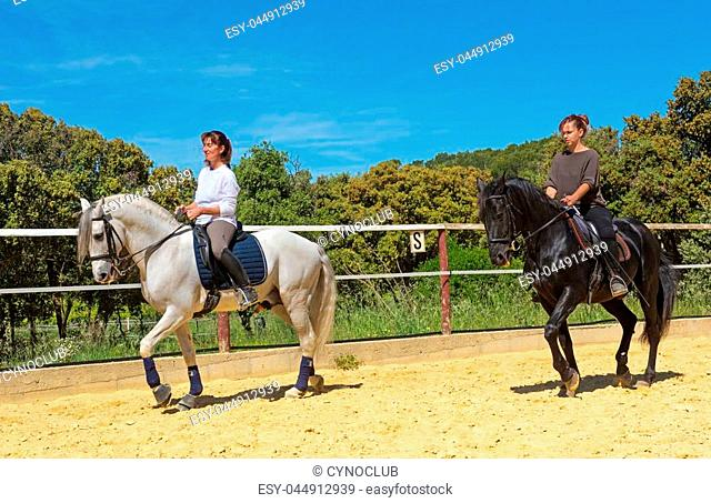 riding woman on a white stallion training in dressage