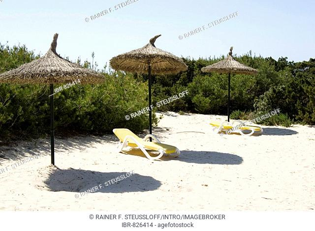 Parasols and sunloungers in the dunes on the beach at Platja des Trenc, Majorca, Balearic Islands, Spain, Europe