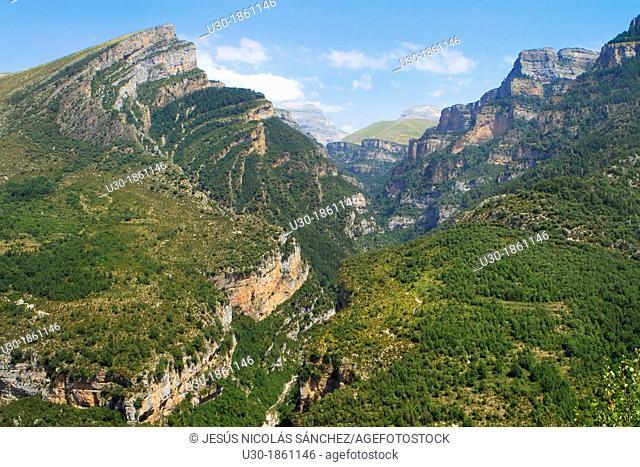 Canyon of Añisclo Valley, belonging to Ordesa y Monte Perdido National Park  Pyrenees  Fanlo  Huesca province  Aragón  Spain
