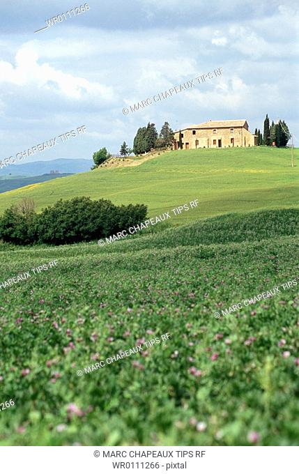 Europe, Italy, Tuscany, Orcia Valley, landscape