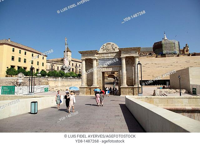 Panoramic view of the city of Cordoba from the Roman bridge, Andalusia, Spain