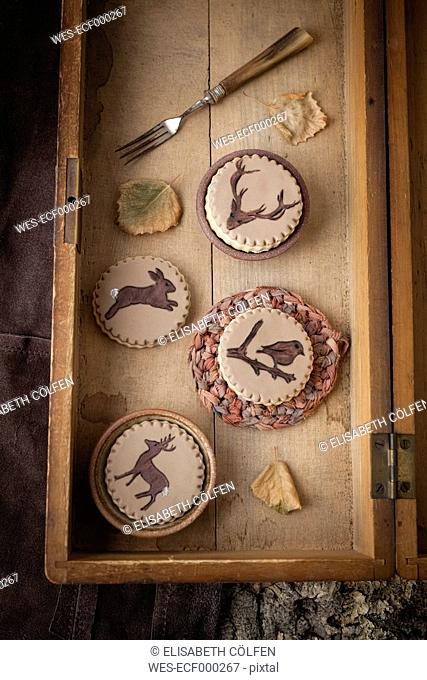 Homemade cookies with animals painted on fondant, close up
