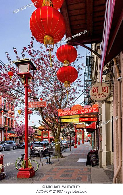 Fisgard Street, Chinatown, Victoria, British Columbia, Canada