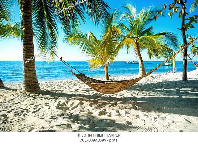 Hammock on tropical beach, Cebu, Philippines