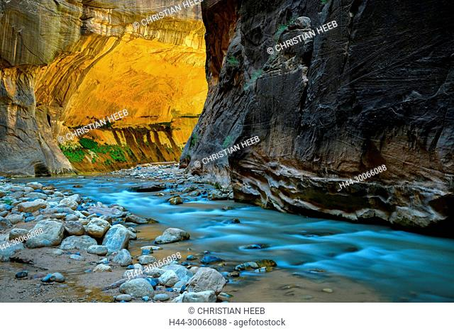 North America, American, USA, Southwest, Colorado Plateau, Utah, Zion, National Park, Narrows