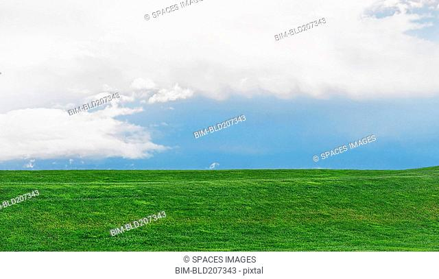 Green grassy field and blue sky with white clouds, Portland